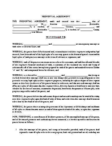 Prenup Agreement Template Screenshot
