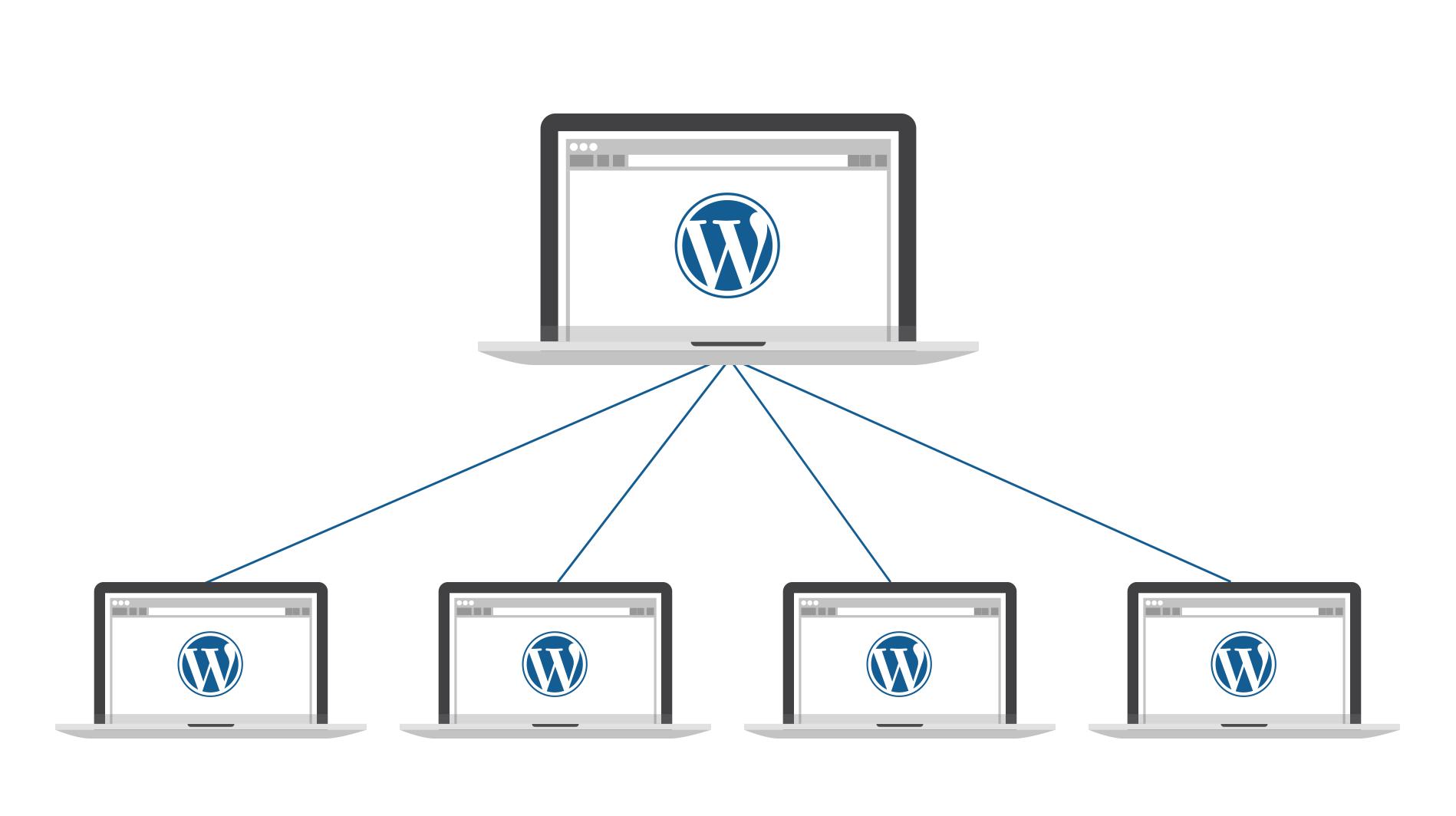 multisite wordpress