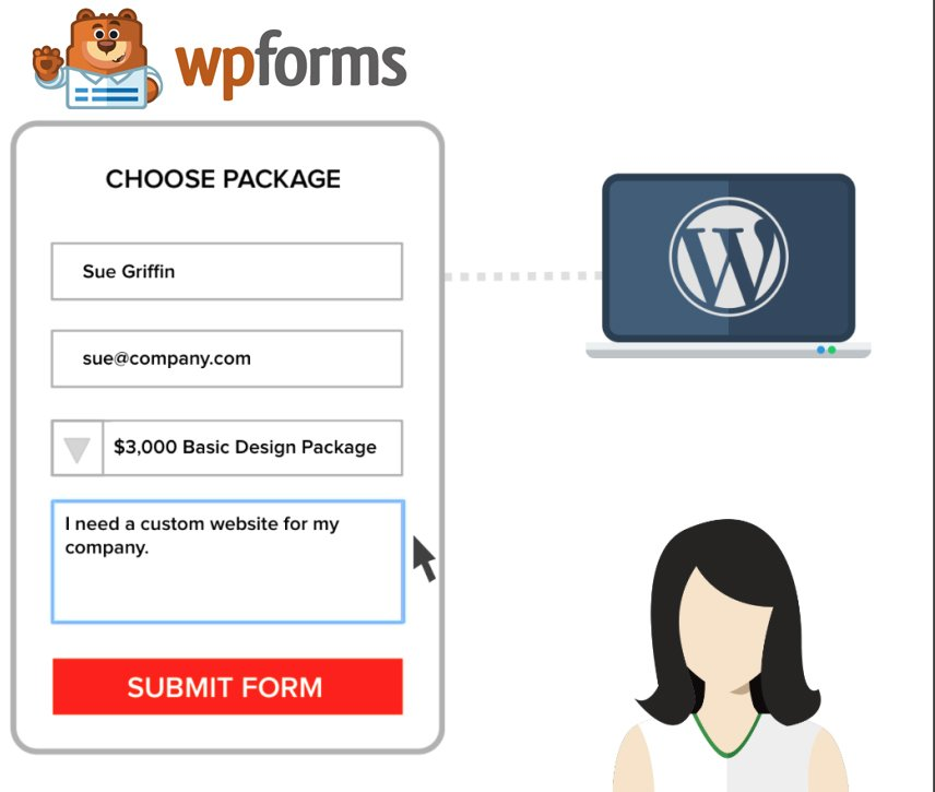 wp forms signature demo
